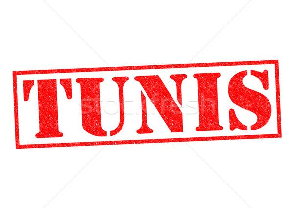 Tunus Tunus beyaz Afrika tatil Stok fotoğraf © chrisdorney