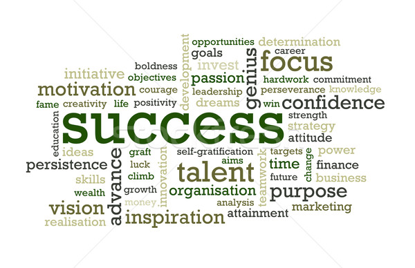 Success Words Stock photo © chrisdorney