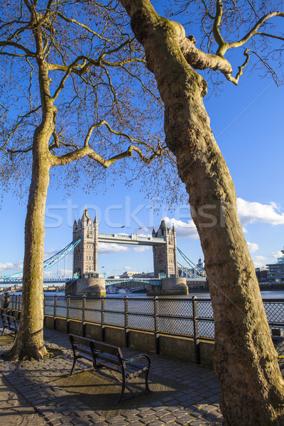 Ver Tower Bridge caminho Londres belo Foto stock © chrisdorney