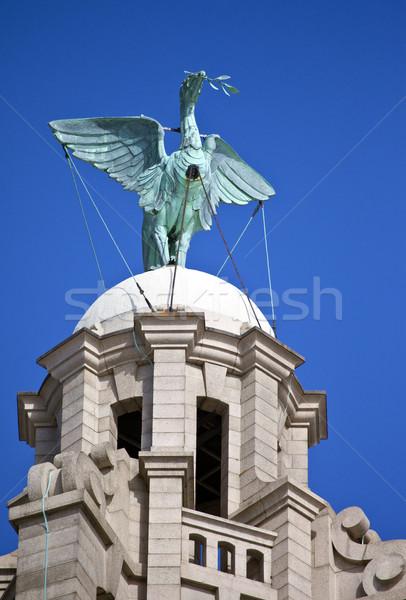 Hígado aves real edificio estatua Liverpool Foto stock © chrisdorney