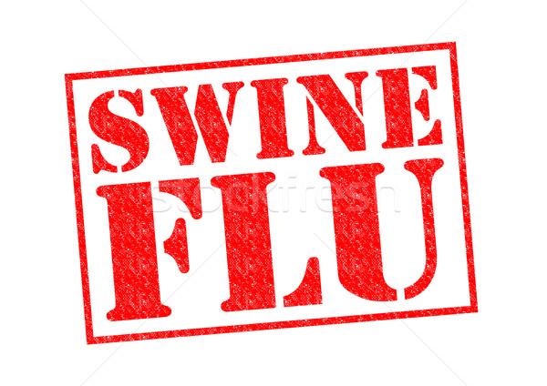 Sertés influenza piros pecsét fehér orvosi Stock fotó © chrisdorney