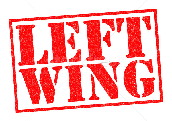 LEFT WING Stock photo © chrisdorney