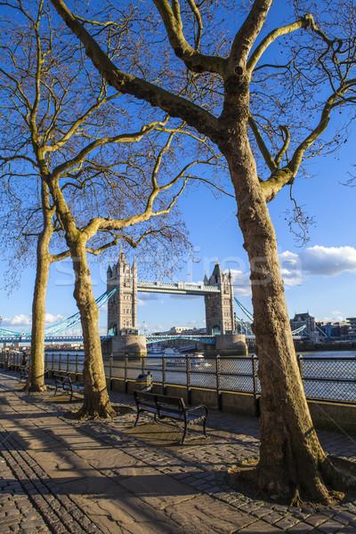 View of Tower Bridge along the Thames Path in London Stock photo © chrisdorney