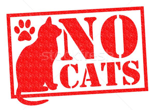 NO CATS Stock photo © chrisdorney