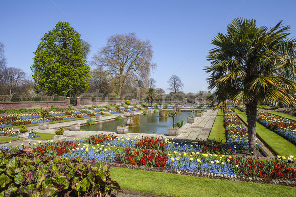 The Sunken Garden at Kensington Palace in London Stock photo © chrisdorney