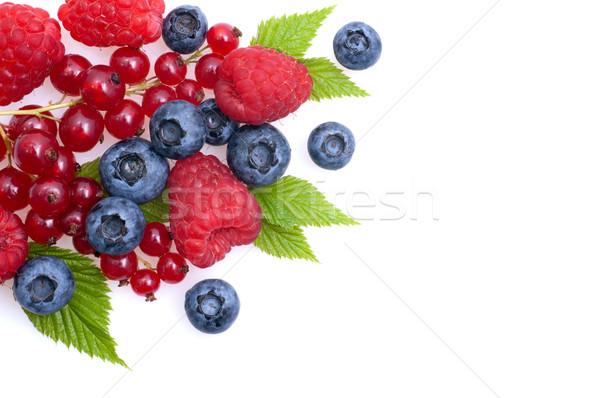 Foto d'archivio: Frutti · di · bosco · fresche · raccolto · lampone
