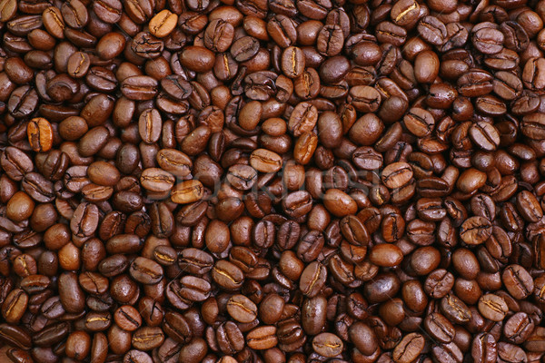 Chicchi di caffè immagine Foto d'archivio © ChrisJung
