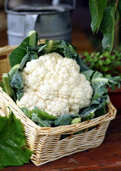 Cauliflower Stock photo © ChrisJung