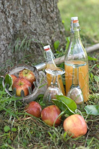 リンゴジュース 自家製 秋 色 バスケット ラベンダー ストックフォト © ChrisJung