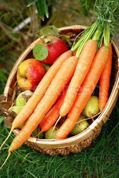 урожай время свежие морковь корзины саду Сток-фото © ChrisJung