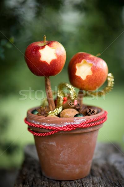 Apple Stock photo © ChrisJung