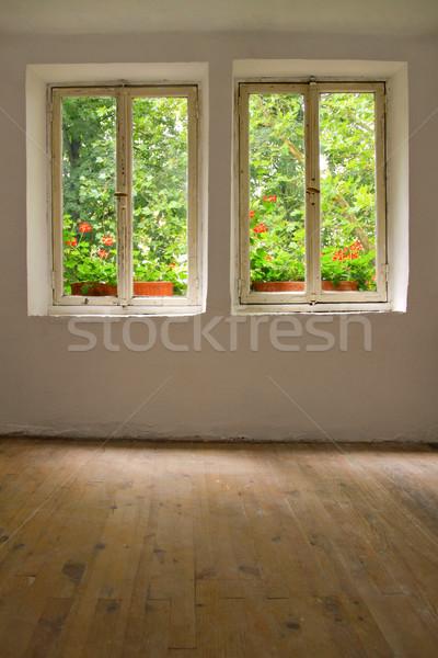 Oude huis Windows tuin groene boerderij Stockfoto © ChrisJung