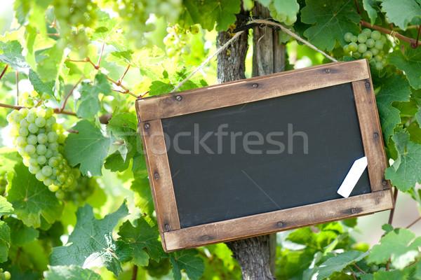Iskolatábla szőlőtőke bor Stock fotó © ChrisJung