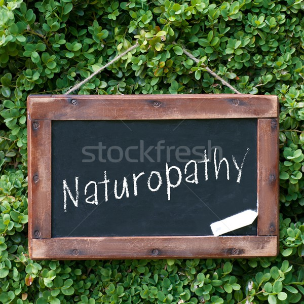 Naturopathie tableau noir marketing soins Photo stock © ChrisJung