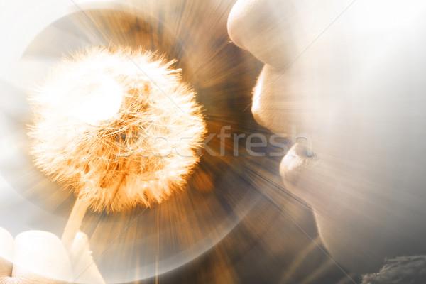 Résumé lumière peinture orange éducation web Photo stock © chrisroll