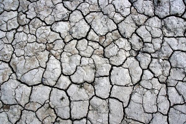 cracked ground texture Stock photo © chrisroll