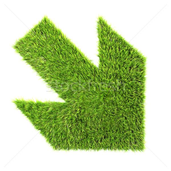 Grass arrow sign Stock photo © chrisroll