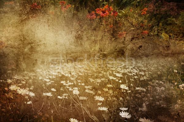 Stock fotó: Grunge · fa · absztrakt · fém · nyár · zöld