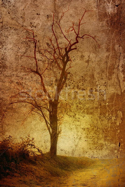 Tree on grunge background Stock photo © chrisroll