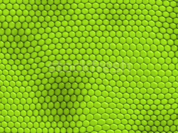 Leguaan textuur reptiel huid groene scherm Stockfoto © chrisroll
