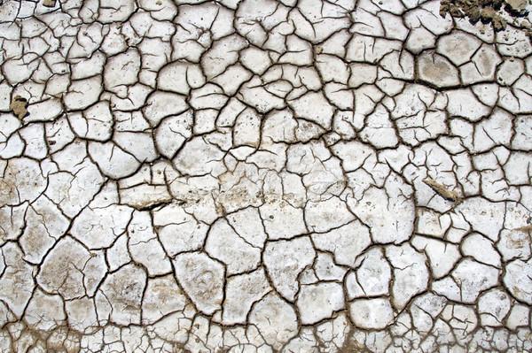 Száraz föld magas döntés textúra háttér Stock fotó © chrisroll