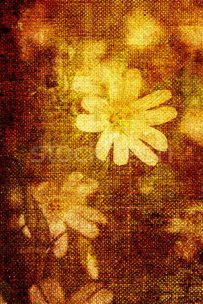 vintage flowers Stock photo © chrisroll