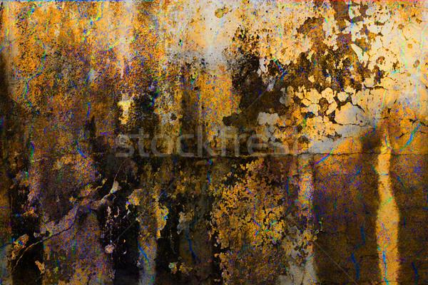grunge paint Stock photo © chrisroll