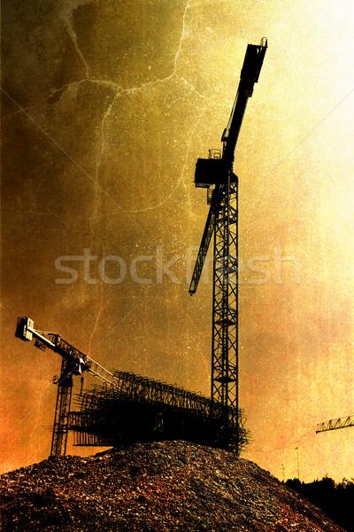 Cranes in the morning Stock photo © chrisroll