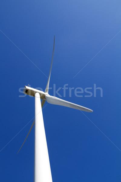 風力タービン 青空 自然 風景 牛 フィールド ストックフォト © chrisroll
