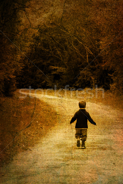 Alone in forest - vintage picture of a young child Stock photo © chrisroll
