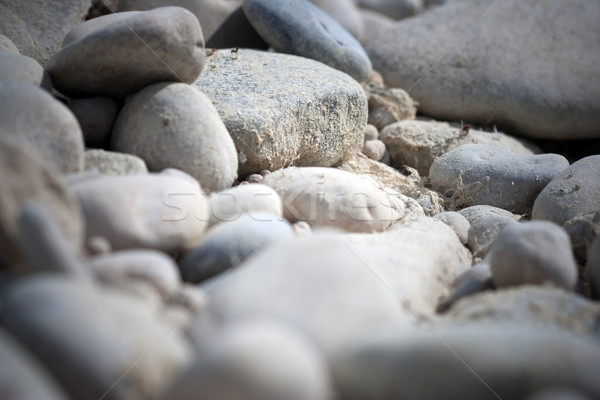 white pebbles Stock photo © chrisroll