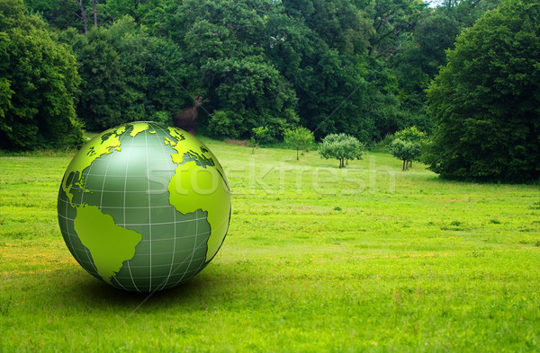 3d glossy globe in a green prairie Stock photo © chrisroll