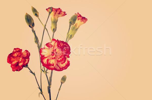 Vintage flowers bouquet Stock photo © cienpies