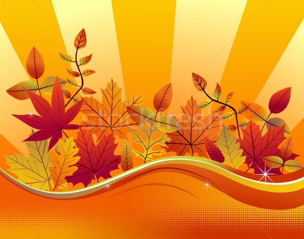 Fall season background Stock photo © cienpies