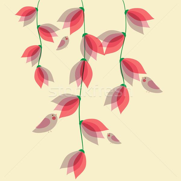 Сток-фото: Cute · прозрачный · цветы · птиц · весны · время