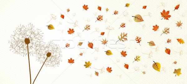 Sezon güz karahindiba ağaç yaprakları eps10 soyut Stok fotoğraf © cienpies