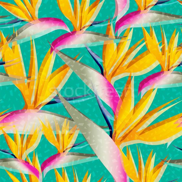 Aves paraíso selva flor retro Foto stock © cienpies