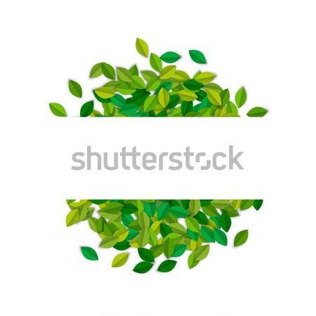 Vide texte étiquette modèle arbre vert laisse Photo stock © cienpies