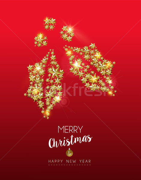 Christmas gold star shape holly on red background Stock photo © cienpies