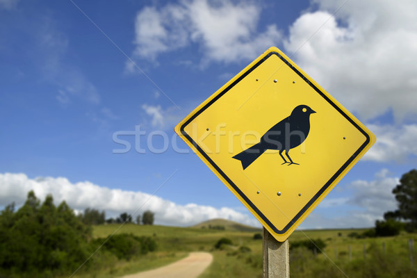 Bird animal wildlife concept icon on road sign Stock photo © cienpies