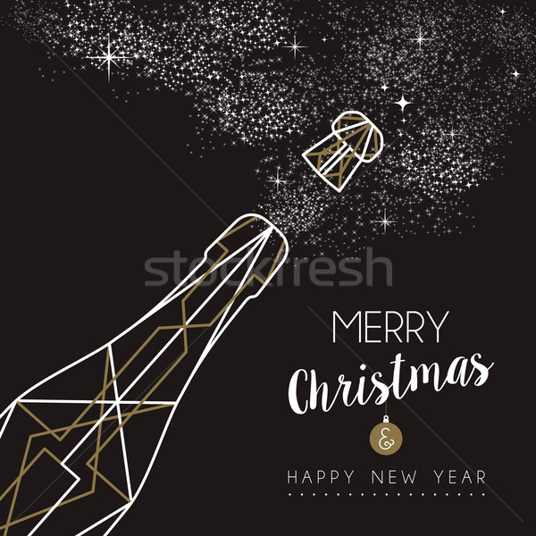 Merry christmas happy new year deco bottle outline Stock photo © cienpies