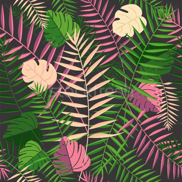 Stockfoto: Tropische · zomer · palmbladeren · retro · palmboom · bladeren