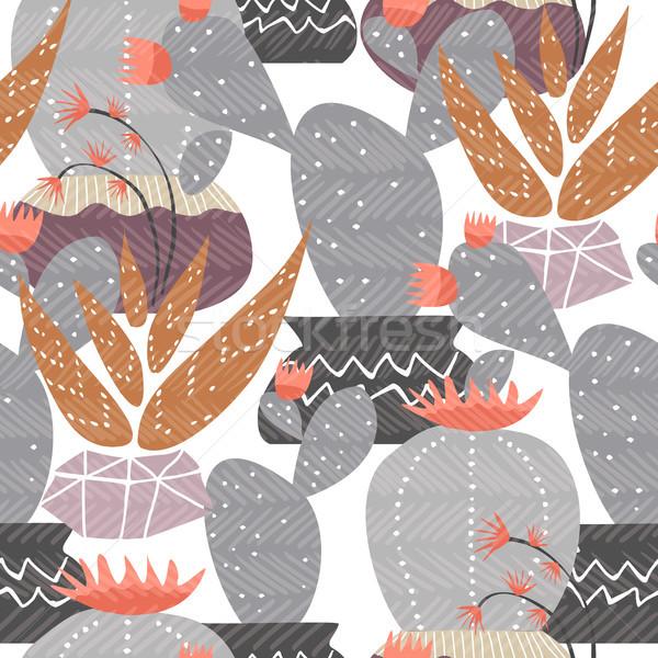 Foto stock: Cacto · planta · decoração · arte · verão