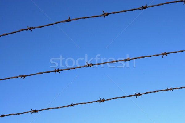 Cut wire fence detail on a clear blue sky Stock photo © cienpies