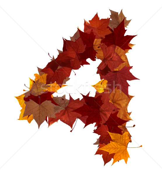 Number four multicolored fall leaf composition isolated Stock photo © cienpies