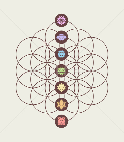 Stock photo: Chakra icons on flower of life modern design