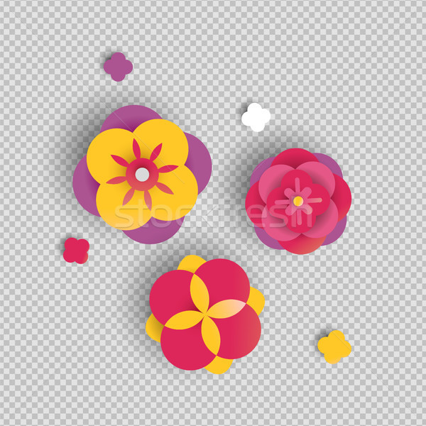 Paper flower set on isolated background Stock photo © cienpies