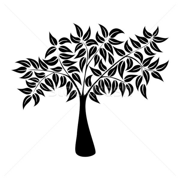 Natural tree symbol silhouette Stock photo © cienpies