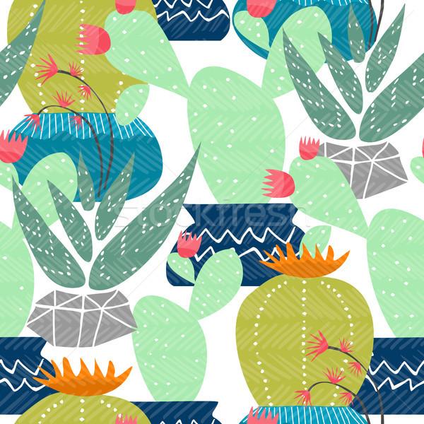 Kaktusz sivatag mexikói növény végtelen minta színes Stock fotó © cienpies