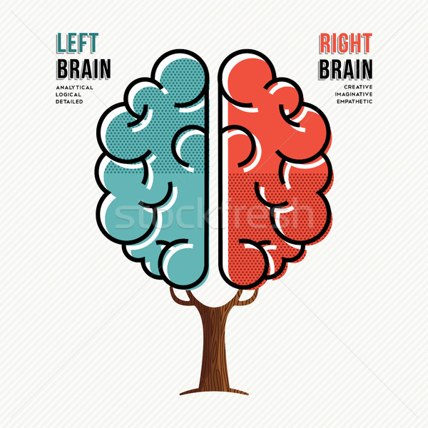Human brain concept for right and left hemisphere Stock photo © cienpies